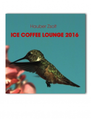 HAUBER ZSOLT ICE COFFEE LOUNGE 2016 / CD